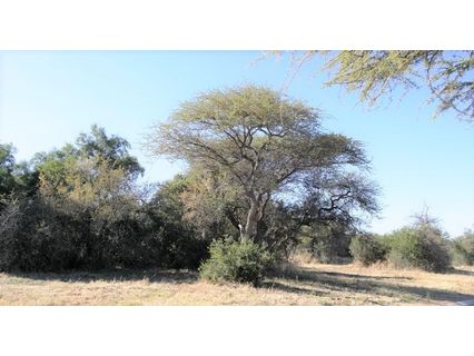 R 60,000 -  Land To Rent in Rooiberg