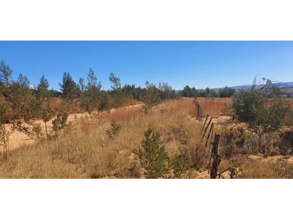 R 1,095,000 -  Land For Sale in Magaliesburg